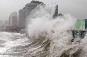 typhoon wave